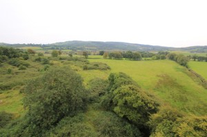 Site of the battle with Spancil Hill (background) where Murtough O'Brien's reinforcements arrived from.